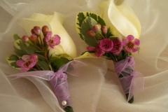 rose & wax boutttoniere