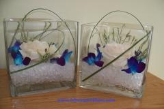 dendorbium-square-vases