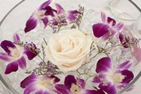 Dendrobium centerpiece