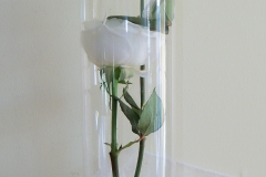 cylinder with rose