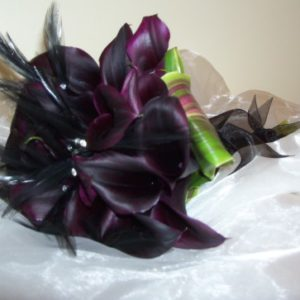Black Callas & Feathers